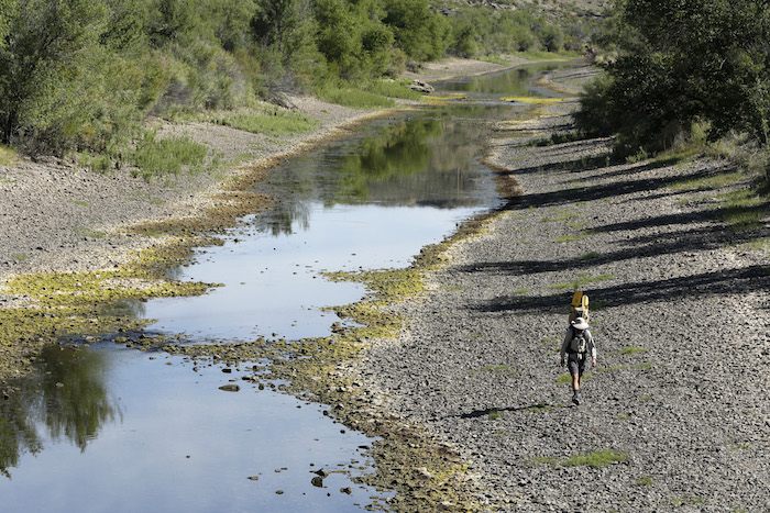 TRUTH OR CONSEQUENCES, NM - Colin McDonald walks the drying riverbed of the Rio Grande below Elephant Butte reservoir near Truth or Consequences, New Mexico. AUGUST 30, 2014. CREDIT: Erich Schlegel/Disappearing Rio Grande Expedition