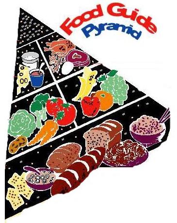 Kid's Food Pyramid