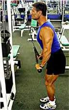 Triceps Pressdowns